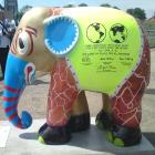 72 - Elephant